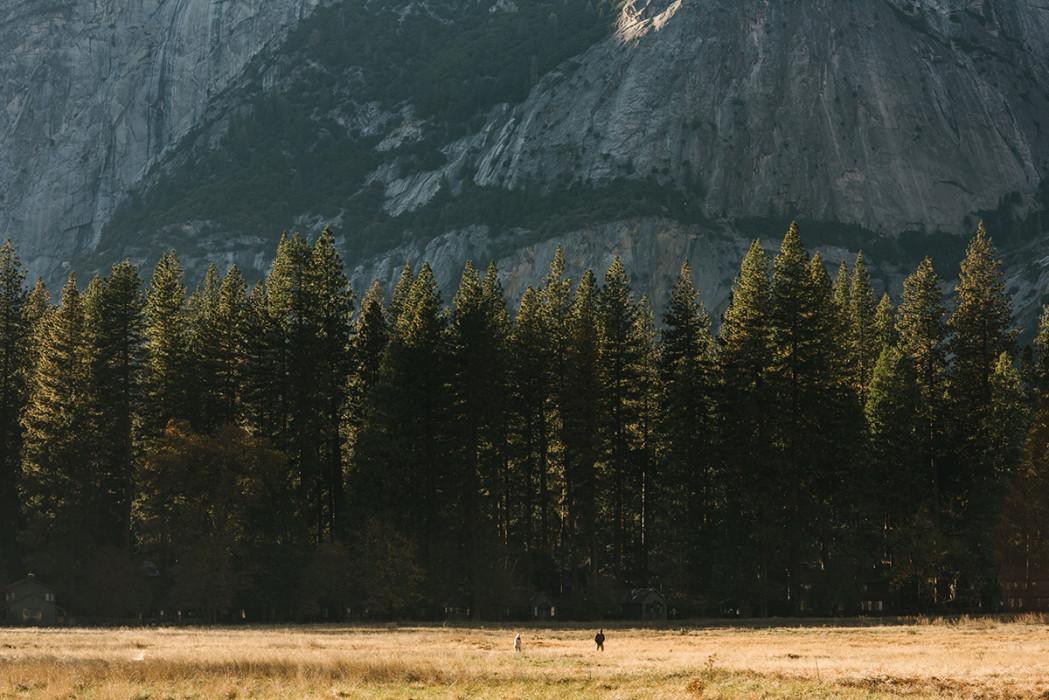 Yosemite valley floor stroll