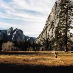 Yosemite valley floor portra 160