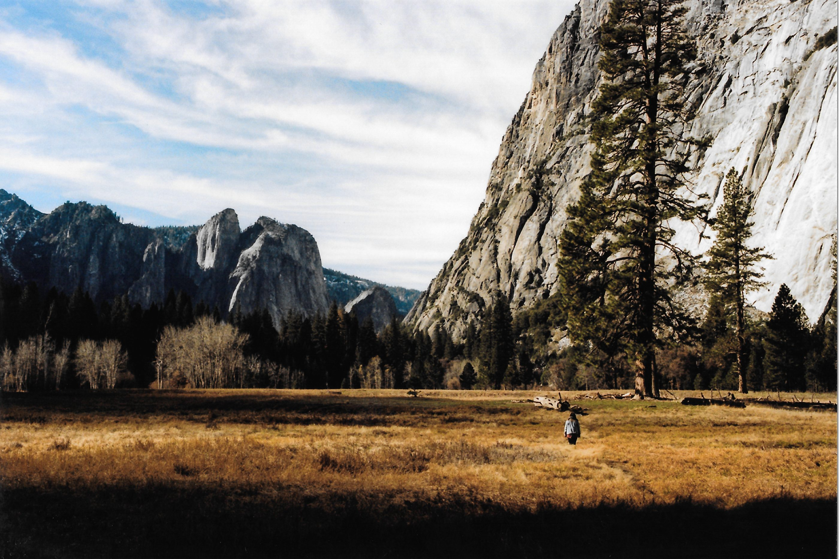 Yosemite valley floor portra 160