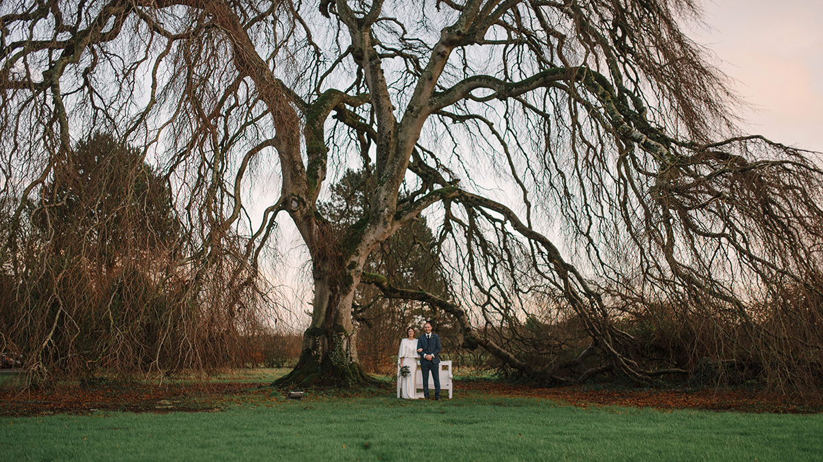 Bellinter House big tree natural Wedding Photographer